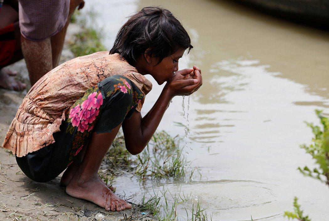 一名在緬甸與孟加拉邊境等待船隻渡河的洛興雅難民女孩喝河水解渴。 路透