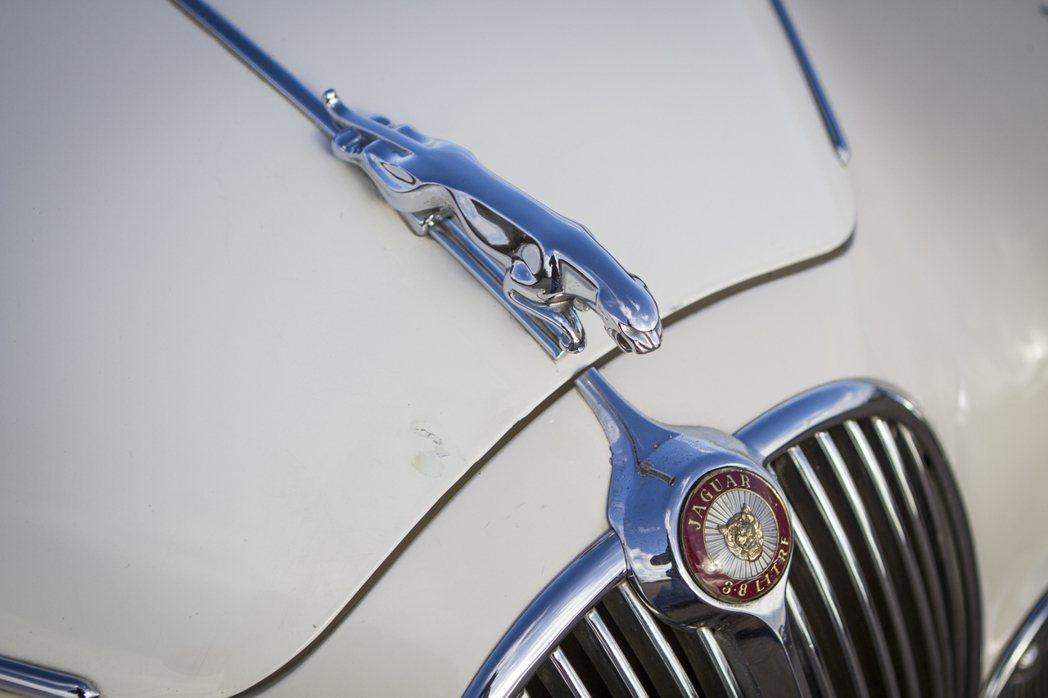 Jaguar既經典又迷人的標誌。 摘自Jaguar