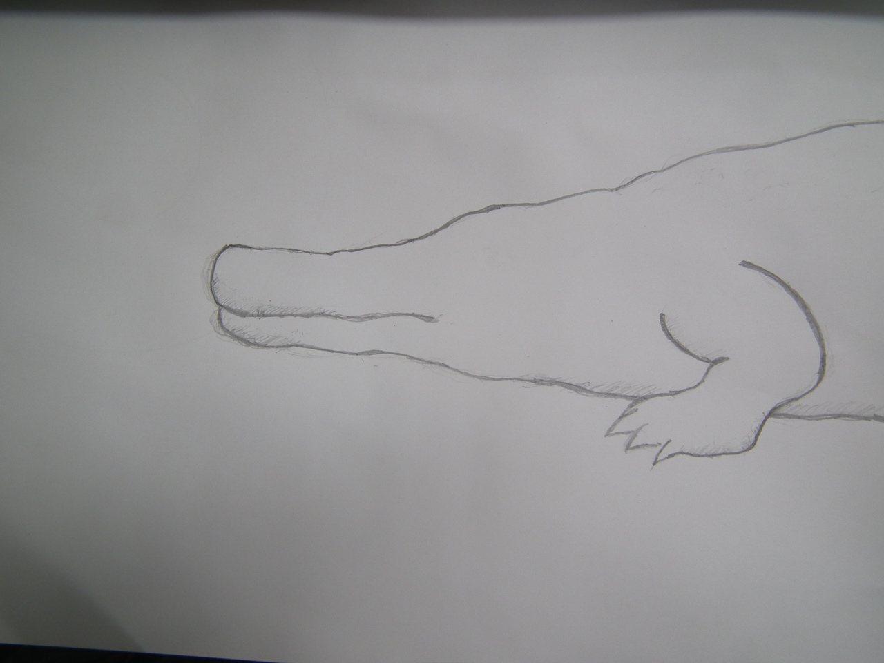 太麻里「鱷魚山」,山形就像圖畫中的鱷魚形態,一眼就知道是鱷魚。 記者尤聰光/攝影