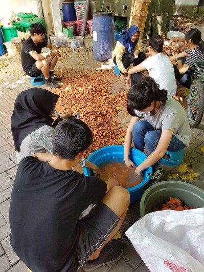 台科大學生清洗汙水處理系統中的濾材。 圖/台科大提供