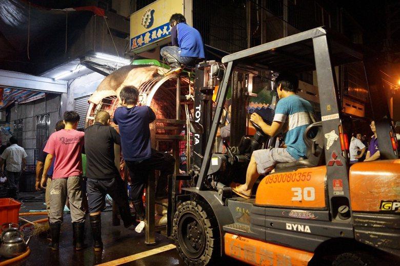 神豬上架裝箱的工程浩大,常需要堆高機的協助。 圖/作者自攝