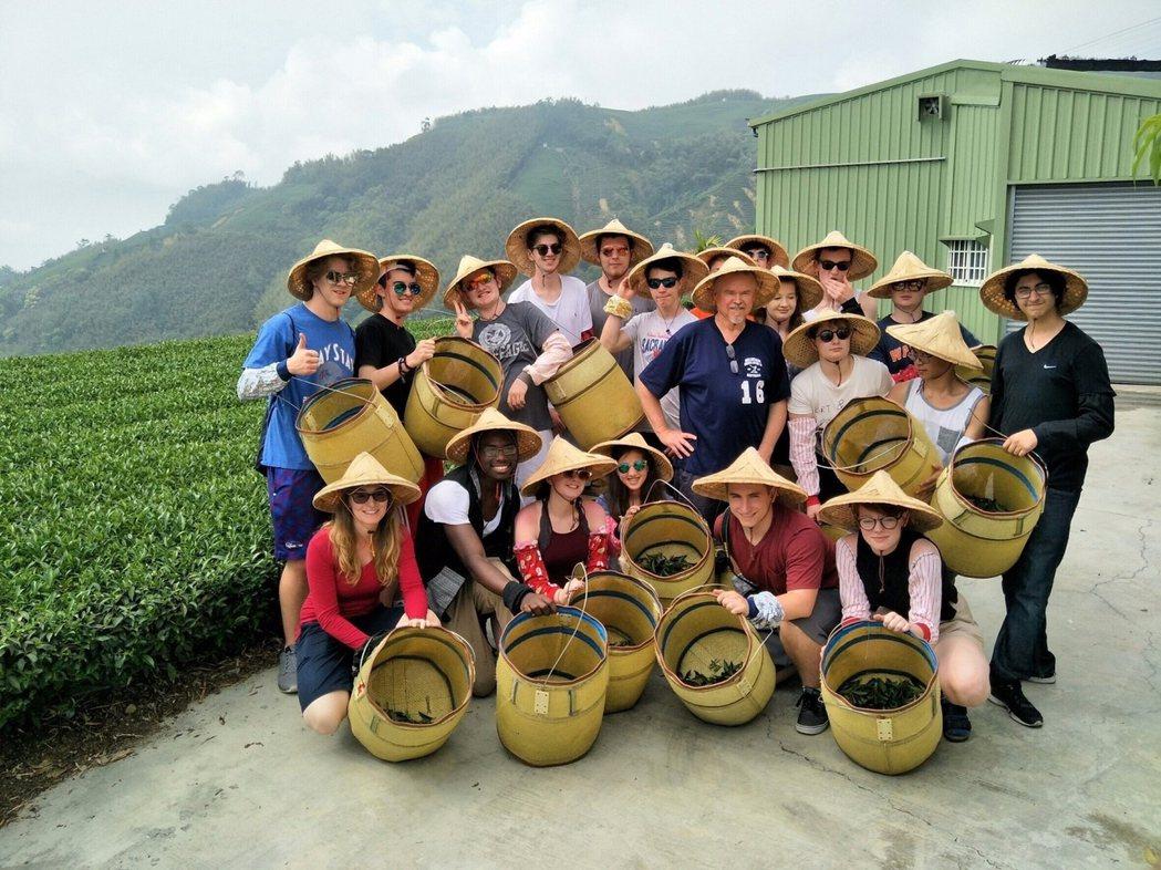 配合太平雲梯開幕,特別推出梅山找茶趣系列活動。