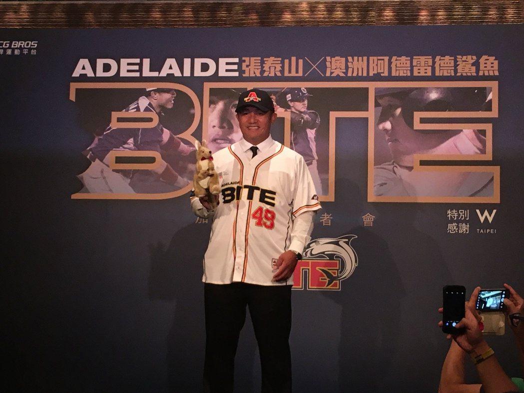 張泰山加盟澳洲職棒阿德雷德鯊魚隊。記者葉姵妤/攝影