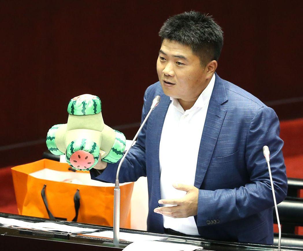 立委顏寬恒拿出消波塊抱枕送林全,期許新政府能幫台灣像消波塊轉型一樣成功。 報系資...