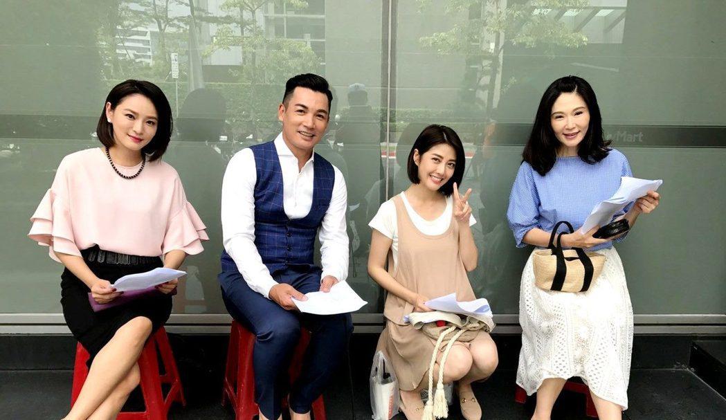 過去「花系列」演員又重組,梁家榕(左起)伊正、韓瑜和張玉嬿合作「一家人」。圖/三...