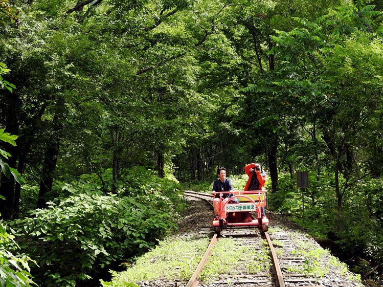 搭乘小火車沿途經過森林,彷彿穿過一個又一個的綠色天然隧道。圖/記者魏妤庭攝影