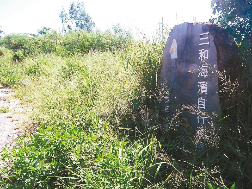 台東太麻里鄉「三和海濱自行車道」,已被雜草淹沒。 記者尤聰光/攝影