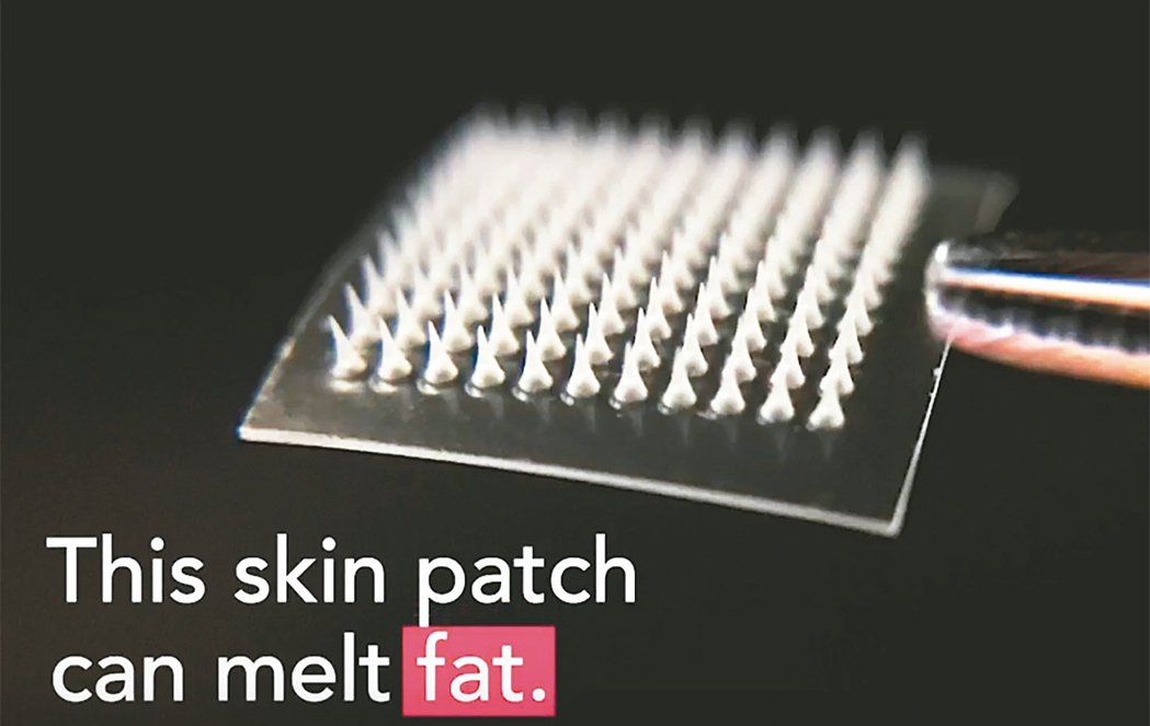 含有細針的貼片或許可用於治療糖尿病或消脂。 圖/取自哥倫比亞大學醫學中心網站
