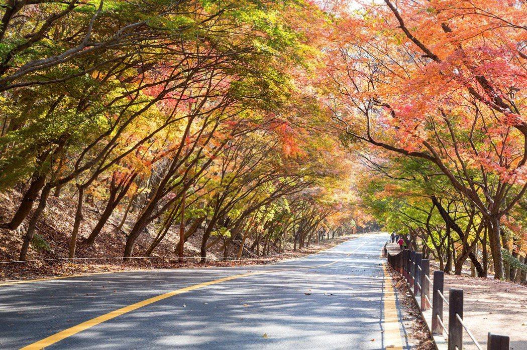 韓國內藏山。圖/KKday提供