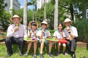 台博館打造城市田園培育小小食農。圖/台博館提供