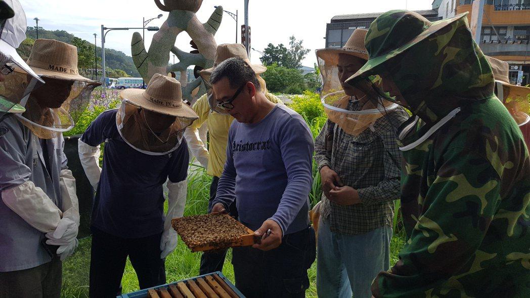 謝文達(右起)、林登維每周六上午在明德社區活動中心旁指導養蜂班志工實作。記者黃瑞...