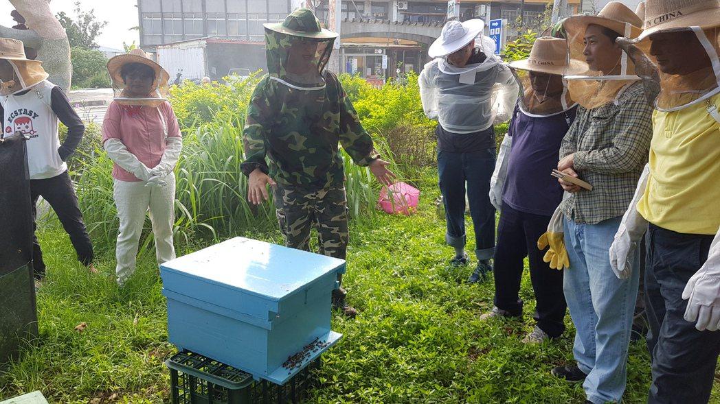 謝文達(左3)每周六上午在明德社區活動中心旁指導養蜂班志工實作。記者黃瑞典/攝影