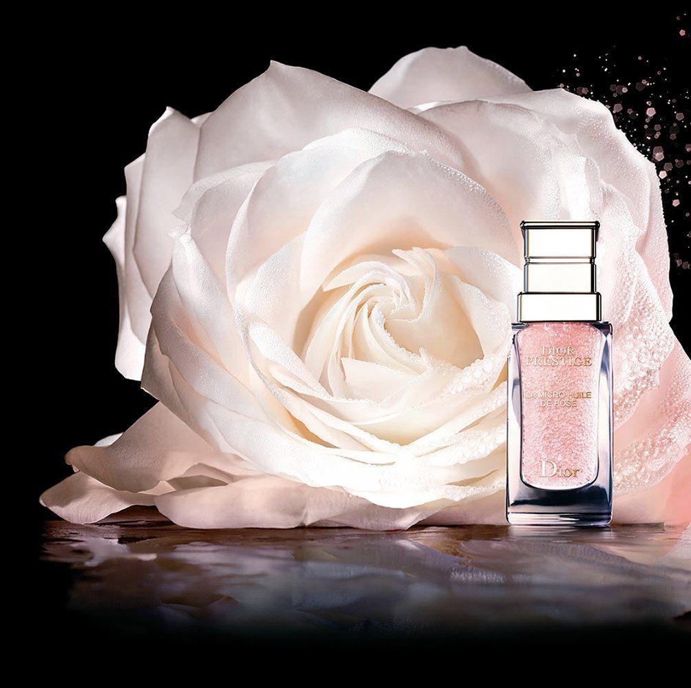 迪奧精萃再生花蜜微導精露以岡維拉玫瑰的香氛為主調。圖/Dior提供