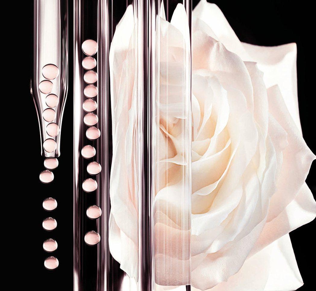 迪奧精萃再生花蜜微導精露的微粒在肌膚上會立即溶解。圖/Dior提供