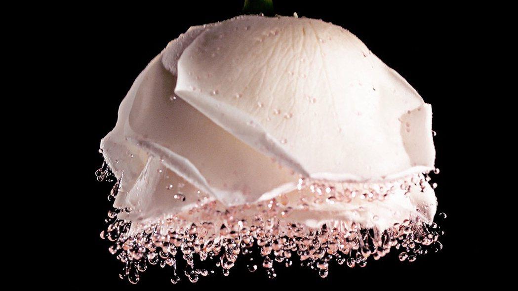 迪奧精萃再生花蜜微導精露的微粒拍到肌膚上即溶解。圖/Dior提供