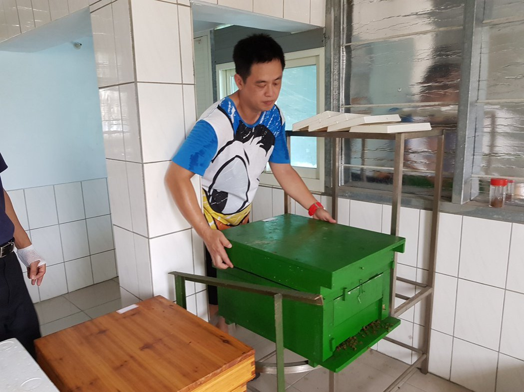 業餘及都市養蜂成了新蜂潮,頭屋鄉民謝文達是上班族,利用下班時間在閒置的頂樓養蜂。...