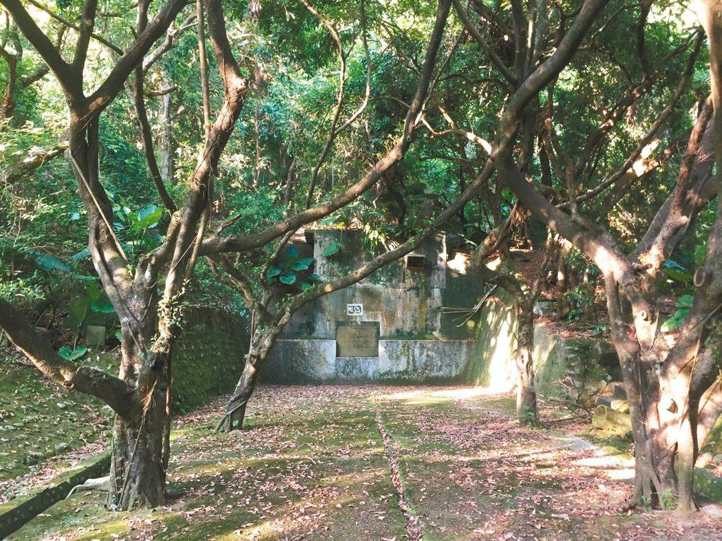 中興新村沿著虎山興建防空洞,隱密不易發現。 記者江良誠/攝影