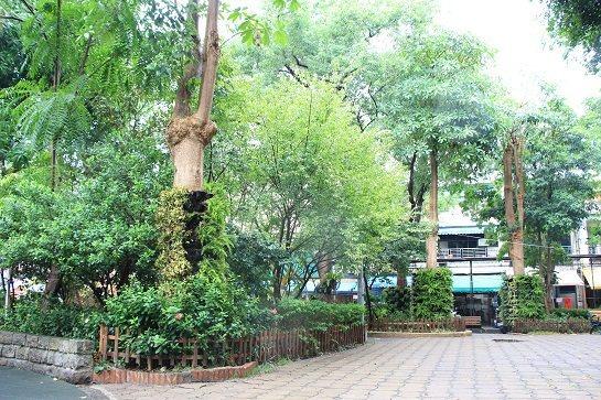 複層式植栽配合蕨類綠牆圓柱,在酷熱的環境中營造出涼爽的綠帶。圖/公園處提供