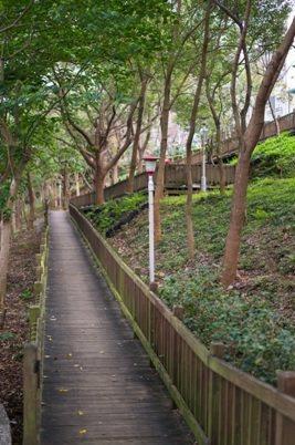 「國泰禾」位於40米的介壽路林蔭大道上,緊鄰5000坪自然生態公園,擁有竹市罕見...