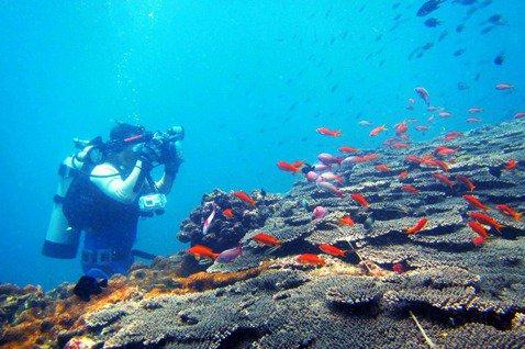 台灣距離海洋國家有多遠?——從漁民節前夕的一通電話談起