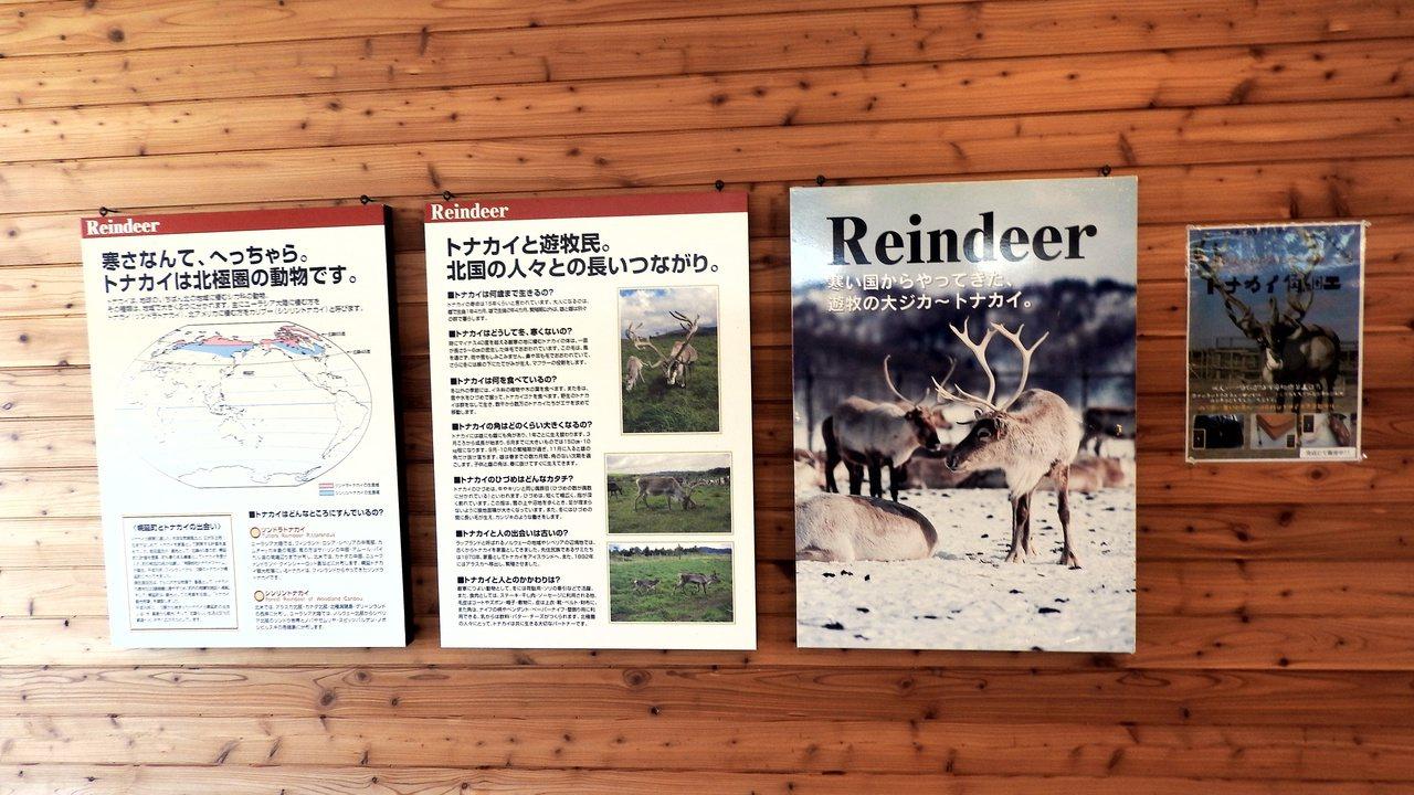 牧場內放置介紹馴鹿到北海道的相關歷史。記者魏妤庭/攝影
