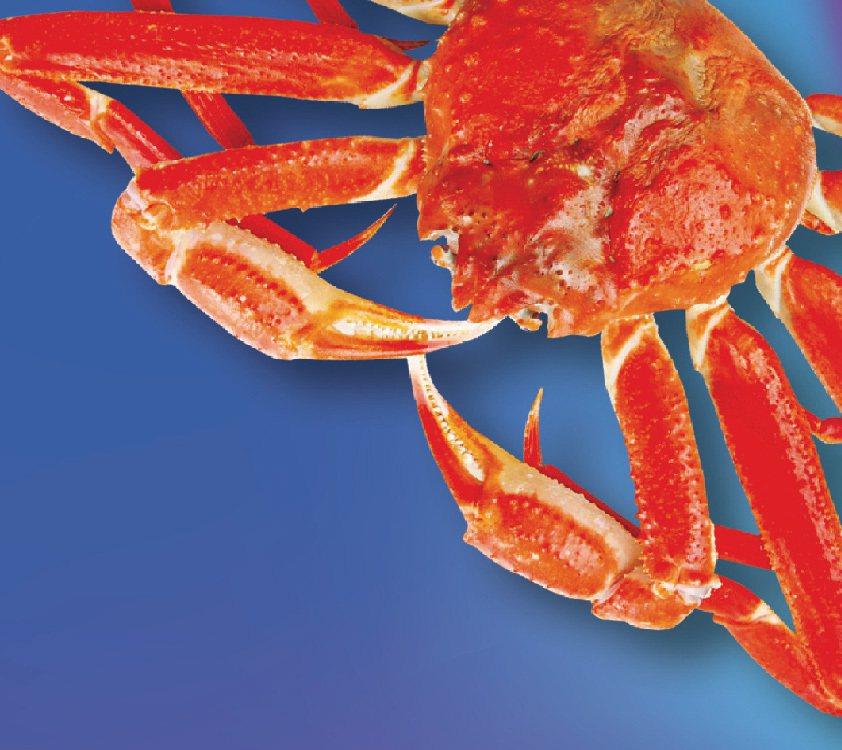 韓國特選鱈場蟹一盒四隻入原價1,800元,特價1,450元。圖/遠百提供