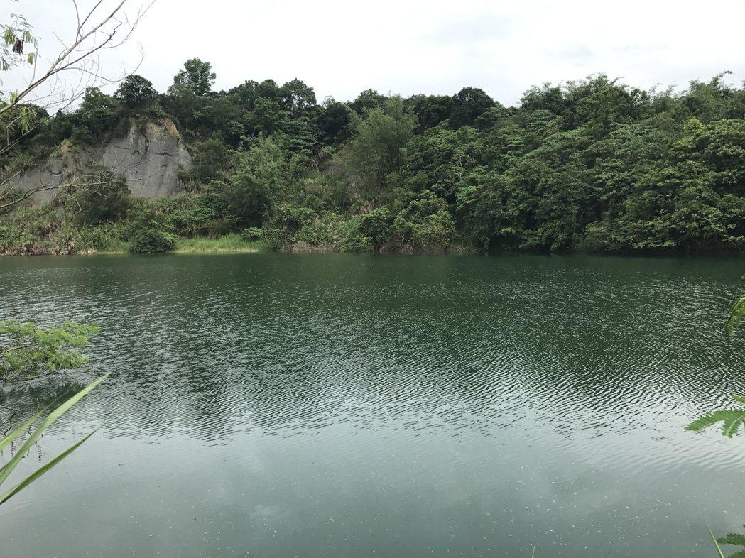 台南市新化區有部分幽靜的埤塘仍保存著,沒有遭到破壞,也是亟待守護的埤塘。 圖/莊...
