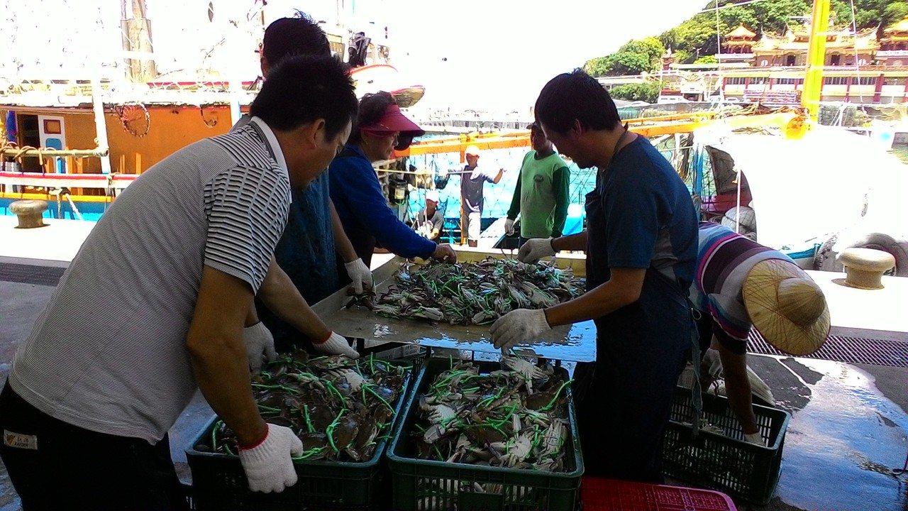 秋季限定萬里蟹開賣啦 快來搶破盤價蟹福袋