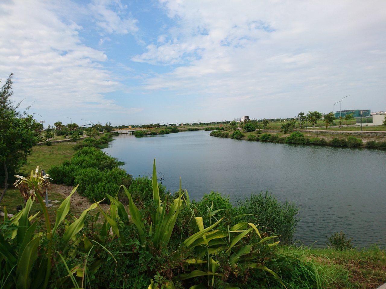 台南市安南區九份子原為較低屋濕地,重劃後土地墊高,僅留一水道,環保人士認為蓄水功...