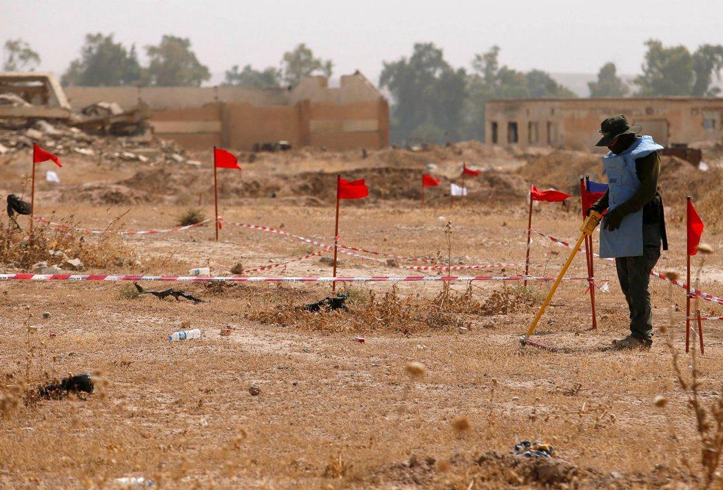 一名掃雷者在摩蘇爾以南城鎮哈曼阿里爾,以機器尋找地雷蹤跡。 (路透)