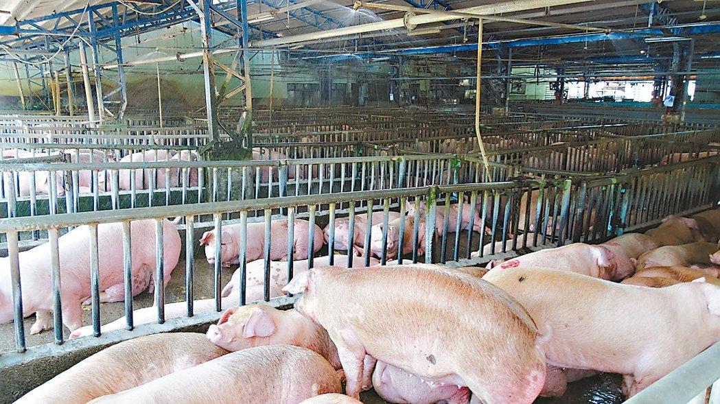 中秋近,豬肉價格與日前中元節相比,已略微回跌。 記者謝進盛/攝影