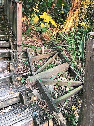 台中市大坑步道部分路線木棧道毀壞,年久失修,登山客看了搖頭。 圖/讀者提供