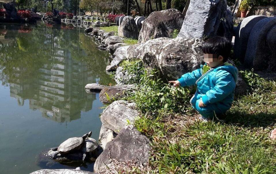 台中市北屯兒童公園將進行改善工程,民眾連署要求保存完整水池,不要消滅北屯的兒時記...