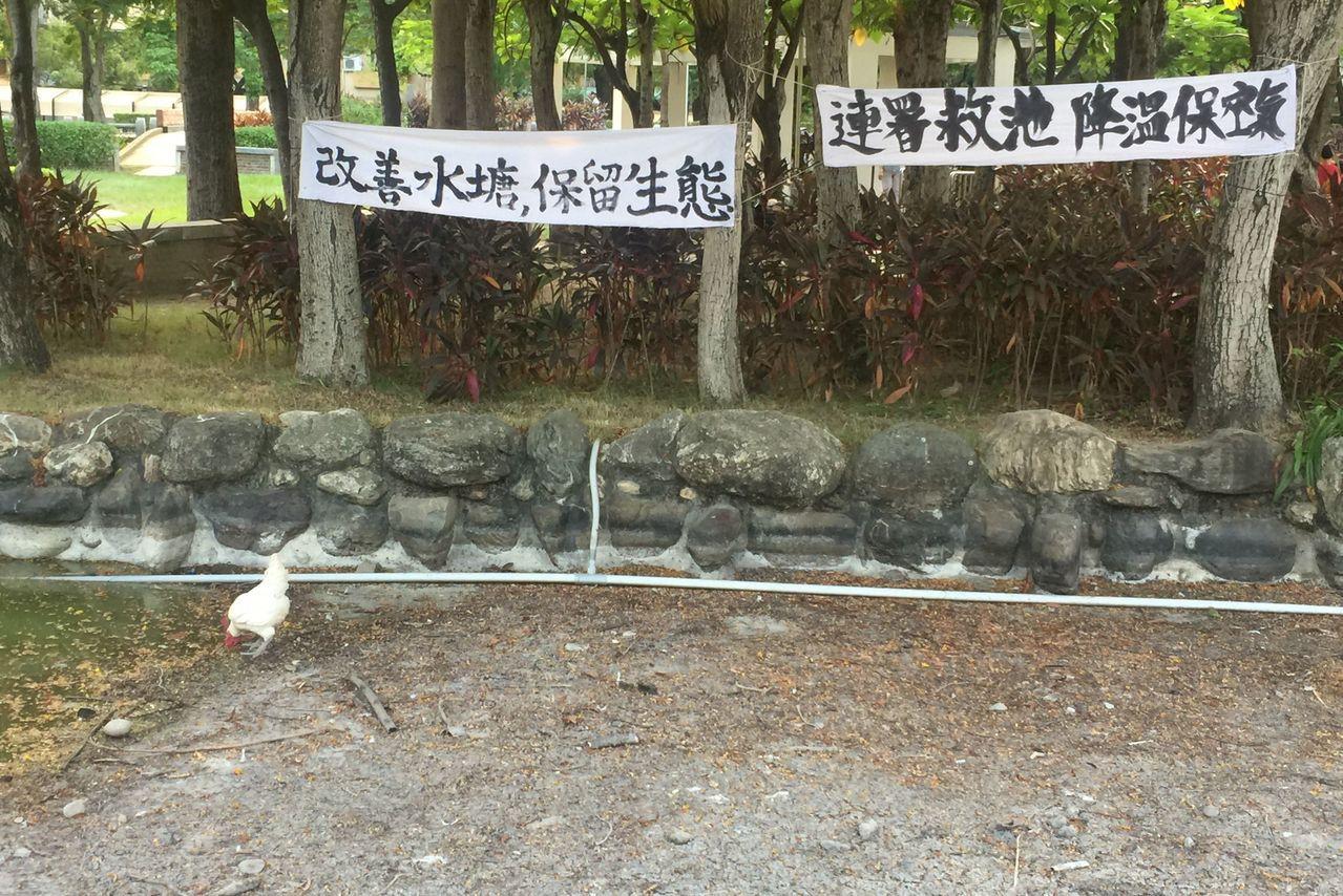台中市北屯兒童公園將進行改善工程,民眾在乾涸的水池旁掛白布條,連署要求保存完整水...