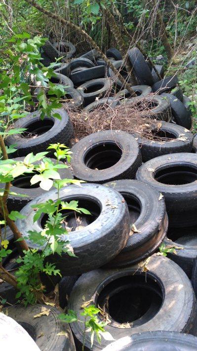 不肖業者將廢棄輪胎丟棄在清水斷崖,因數量太多被巡山員發現。圖/警方提供