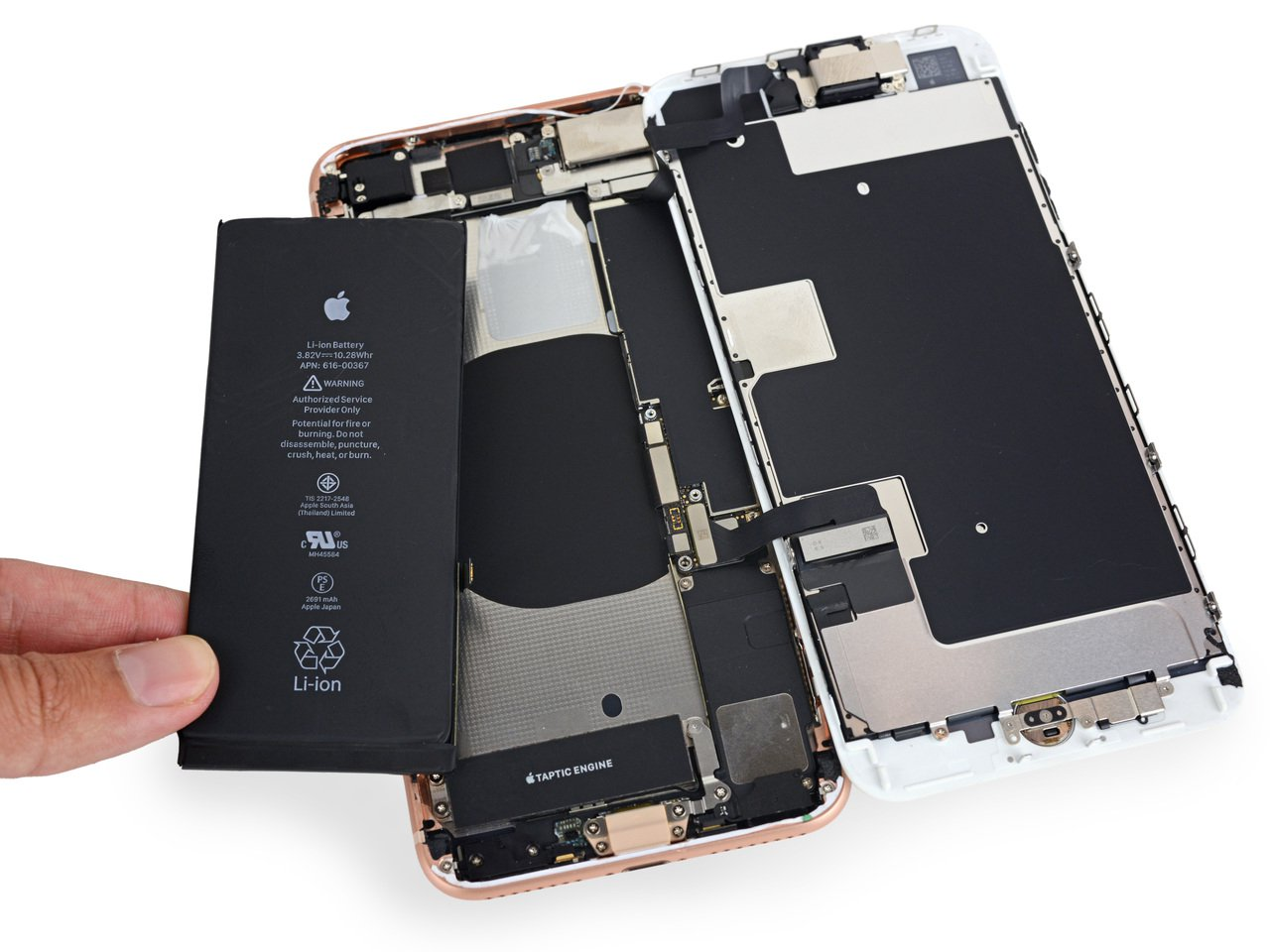 外媒《iFixit》拆解iPhone 8 Plus的電池。 圖擷自iFixit