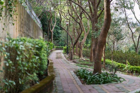 「國泰禾」28坪的戶別,面對著5000坪的公園,讓竹科人輕鬆享有恬靜悠閒的生活。...