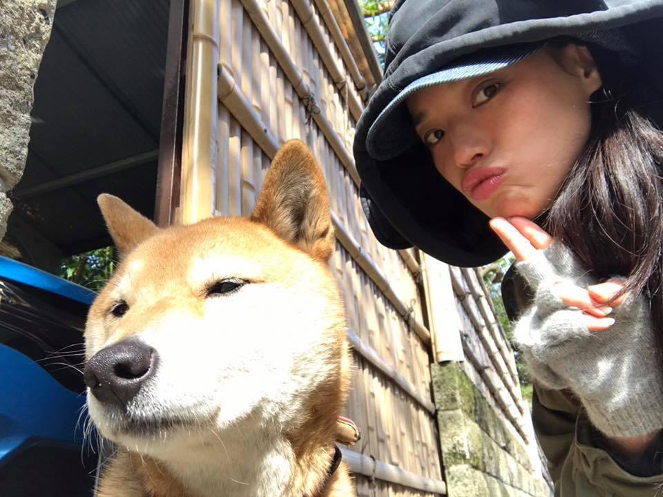 舒淇常與這隻柴犬拍照。 圖/擷自舒淇臉書。