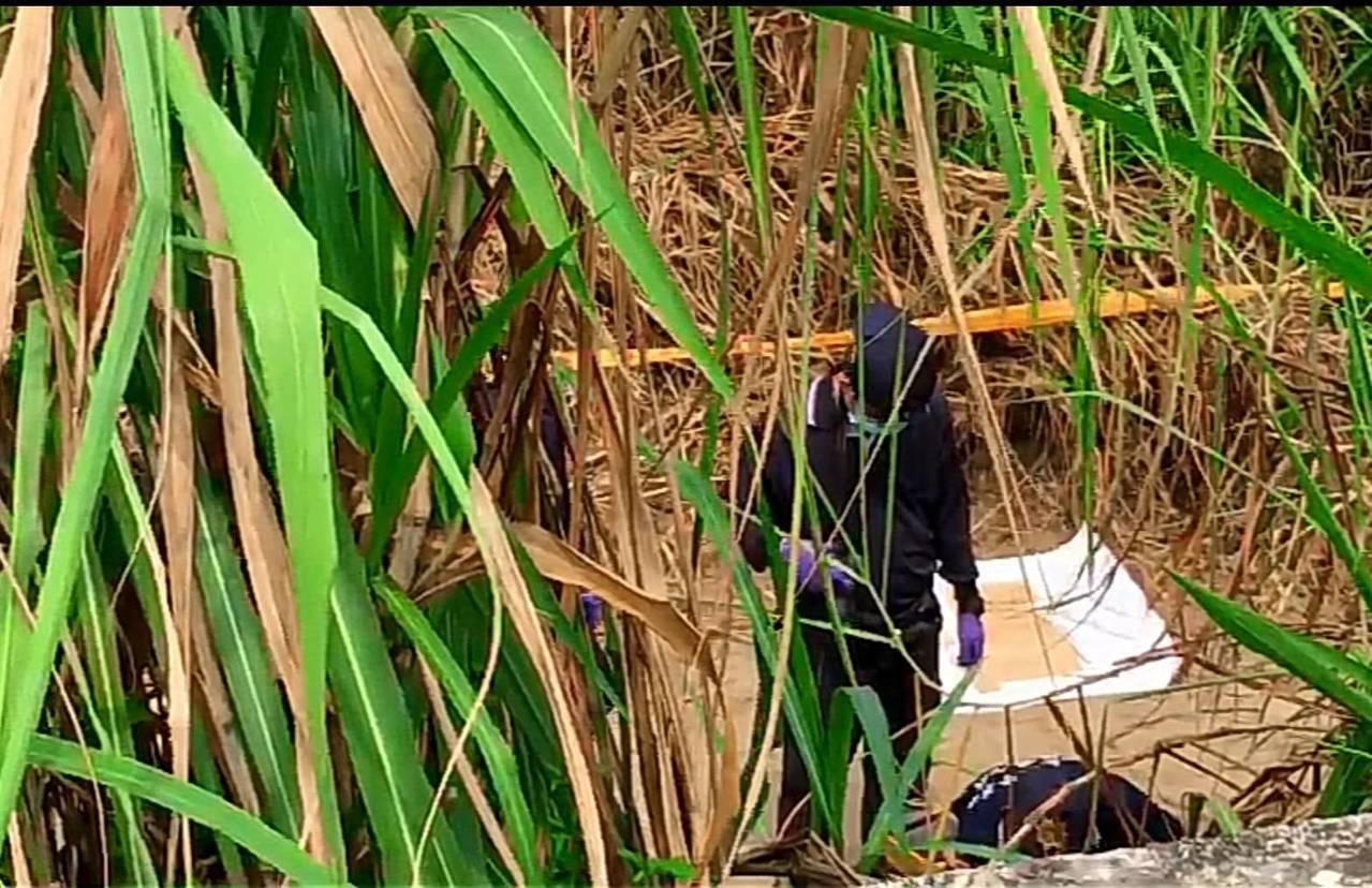 警方今天上午持續到水上陳屍周邊採證。記者卜敏正/攝影
