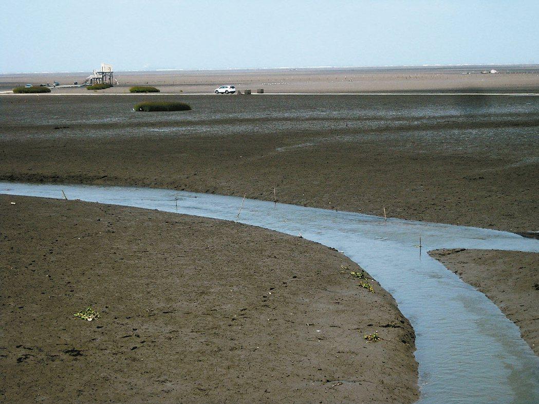 彰化縣大肚溪口保護區的潮間帶有漁民出海路,平常退潮就有車輛進出。 記者簡慧珍/攝...