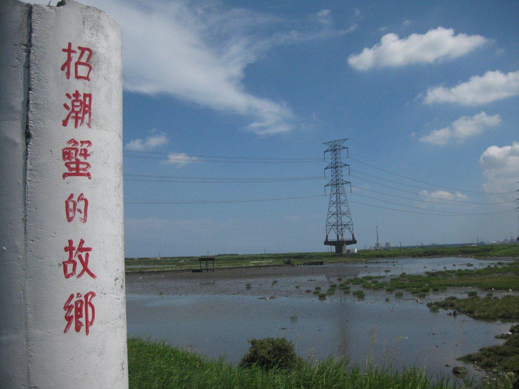 彰化縣政府將興建海空步道,欣賞台灣招潮蟹的故鄉。 記者簡慧珍/攝影