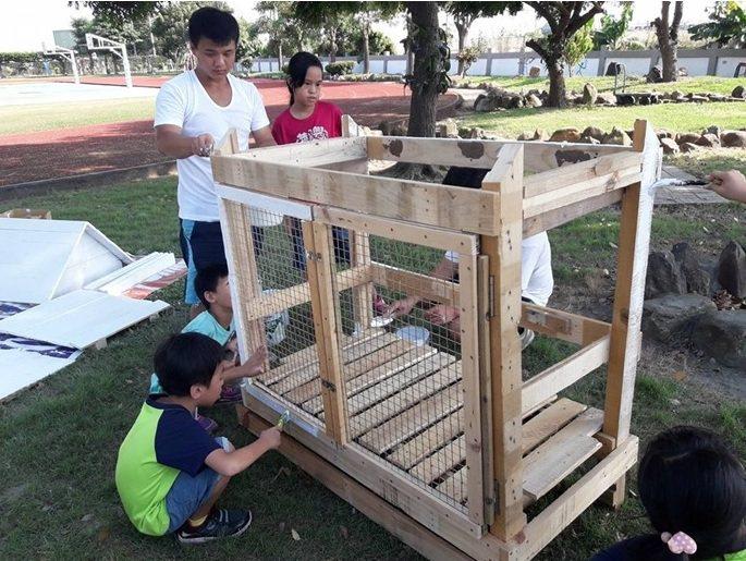 彰化縣偏鄉的興華國小校園半個月前一夜間冒出2隻被棄養的流浪兔,志工和學童動手幫牠...