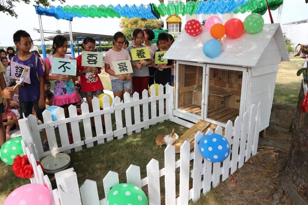 彰化縣偏鄉的興華國小學童選在中秋節前,為被棄養在校園的2隻流浪兔舉辦入厝活動。圖...