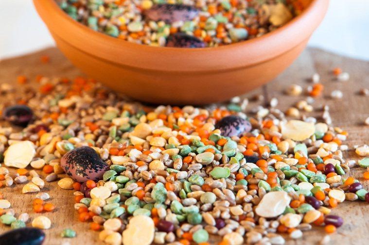 豆、蛋、魚類是優質蛋白質來源,口感也較軟易入口。 圖/元氣周報