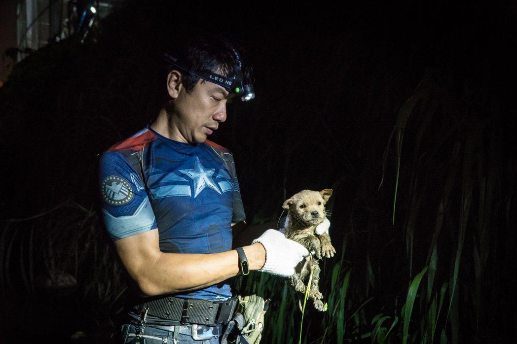 流浪毛寶貝掉進水溝、困在路上等動物救援案例,光是新北一年就接獲八千件報案。 圖/...