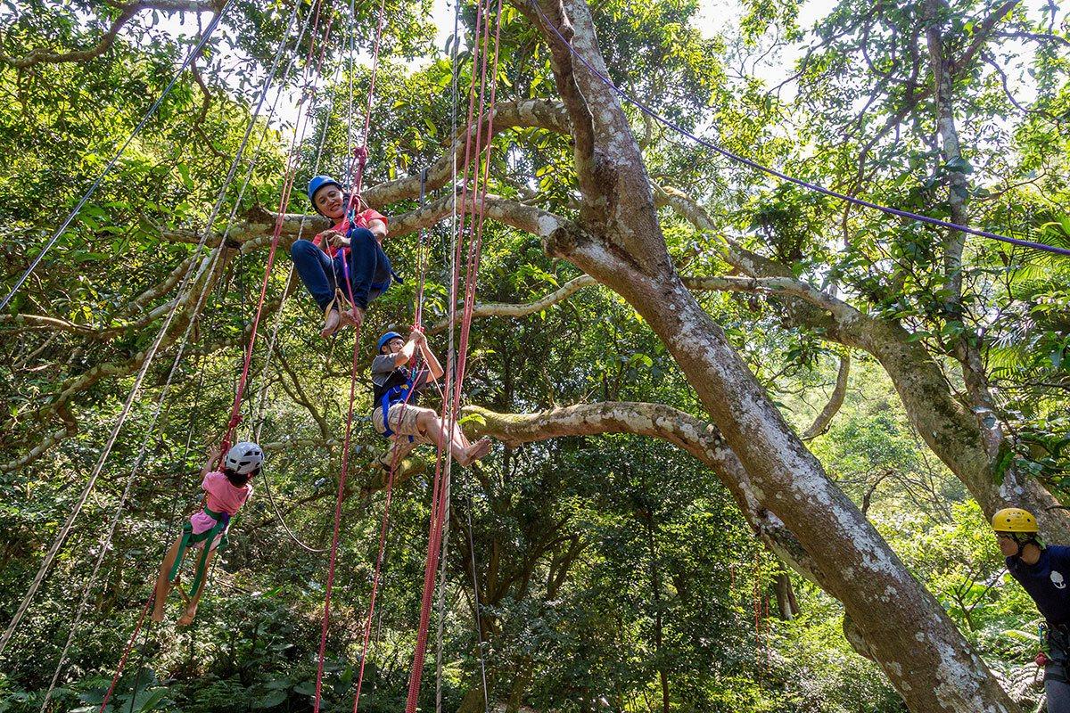 親子共同體驗攀樹,看見全然不同的新視界。