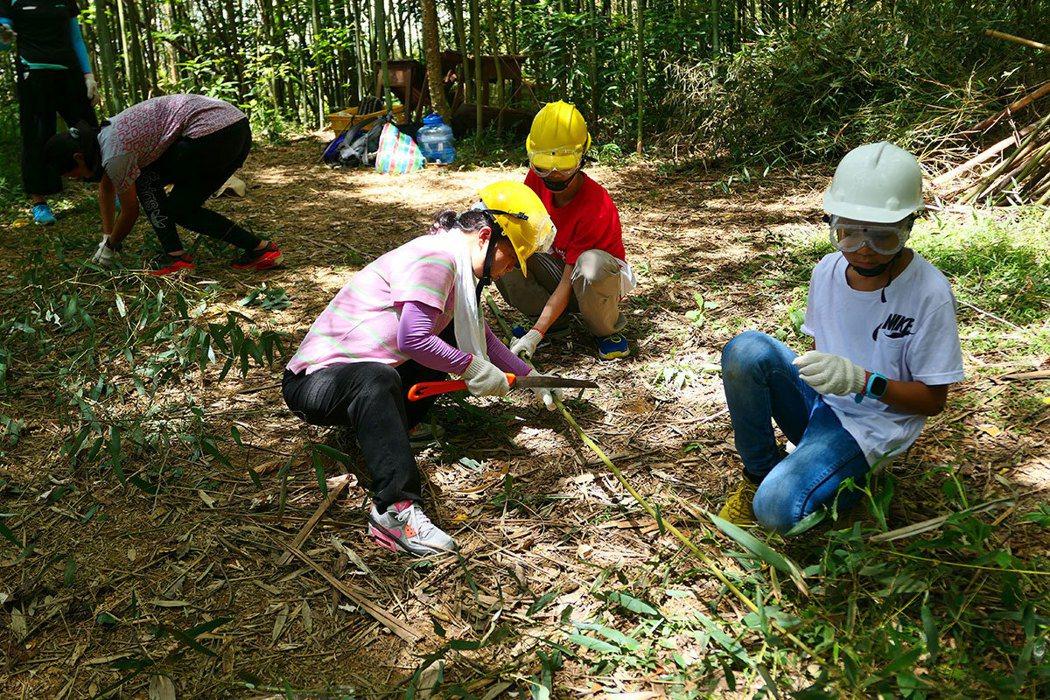 參加自然谷工作假期的志工,為竹林疏伐作林地整理。 圖片提供|自然谷