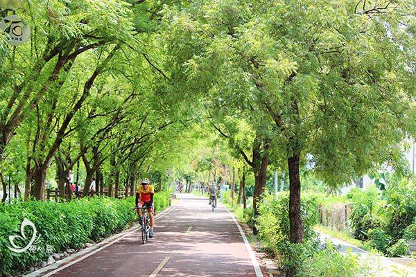 台中東豐自行車道。 圖片來源:夜心辰提供