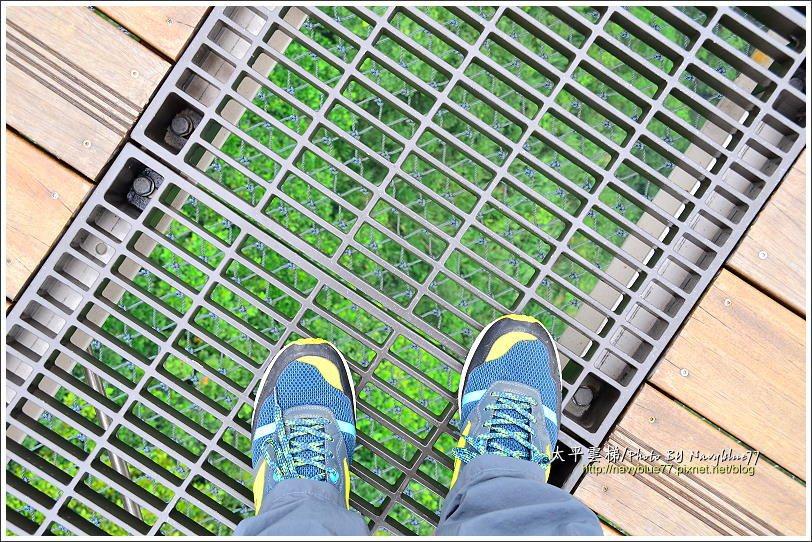 ↑吊橋中段橋面鏤空,可以透視近100公尺深的溪谷。