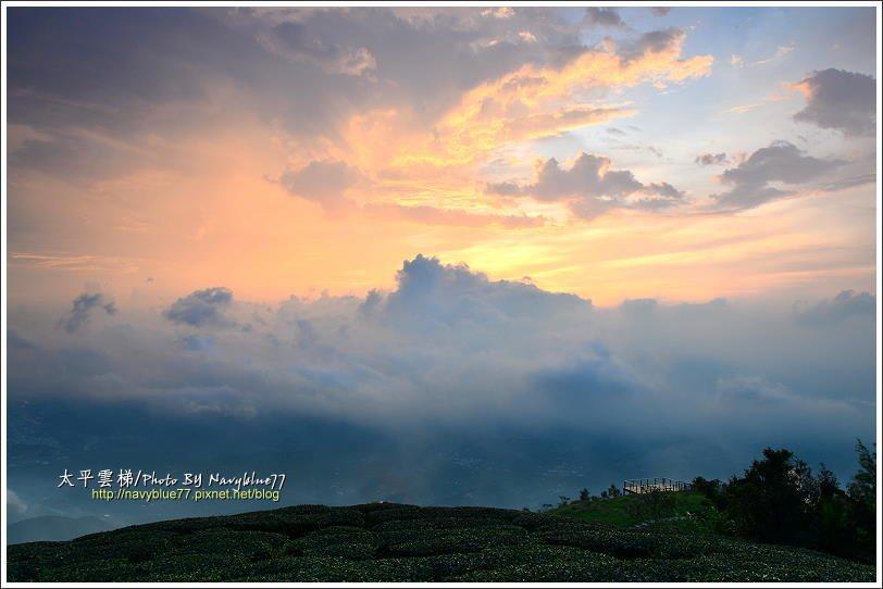 ↑龜山山頂是大片茶園,視野無遮攔,擁有無敵展望,可以這天山前一片雲霧遮蔽了山下的...